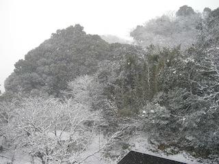 機械工学科建物周辺の大雪1